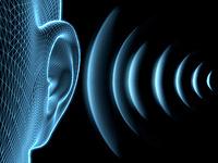 Bild zum Vergrößern anklicken - Lärmschutz